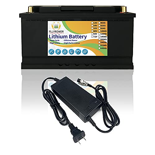 FLYPOWER LifePo4 Battery 12v 100Ah Up to 7000 Deep Cycles with BMS Lithium Iron Phosphate Battery for Trolling Motor Solar Panels RV Bass Boats Golf Carts Off Grid Applications Household Appliances